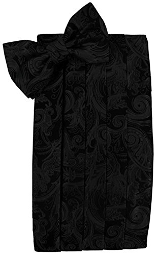 Cardi Men's Tapestry Paisley Bowtie and Cummerbund Set, Black