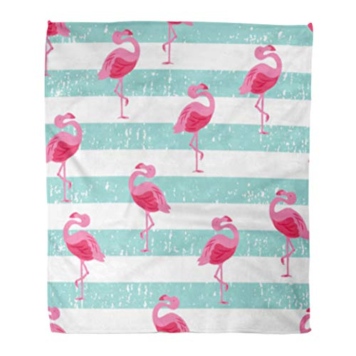 Golee Throw Blanket Teal Pattern Beachy Flamingo Pink Bird Skate Surf Animal Back 60x80 Inches Warm Fuzzy Soft Blanket for Bed ()