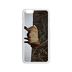 The Deer Hight Quality Plastic Ipod Touch 4