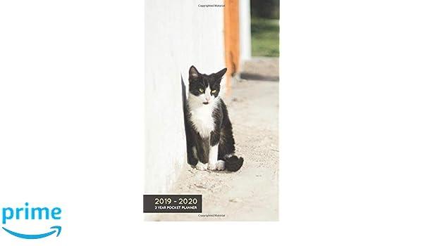 2019-2020 2 Year Pocket Planner: Monthly Agenda Organiser ...