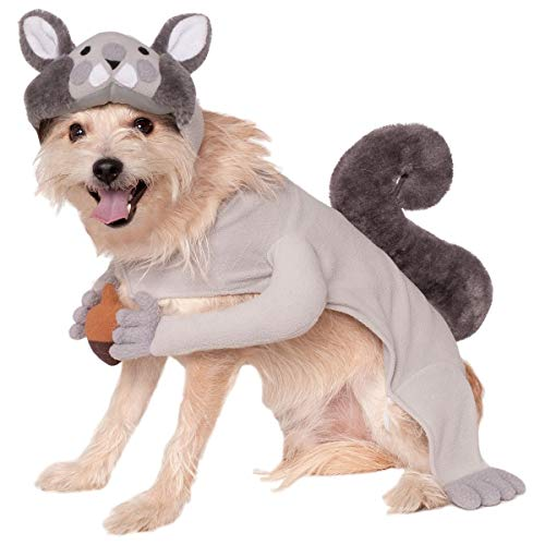 Squirrel Costume Pet Halloween Fancy Dress (medium) -