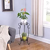 DAZONE Metal 2 Tiers Plant Stand Indoor Floor Model Potted Plant Stand