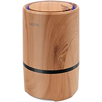 WSTA Desktop Air Purifier,Air Ionizer,Portable Air Purifier,True HEPA Air Cleaner Remove Cigarette Smoke,Dust,Pollen,Bad Odors with 5V USB Cable and 110V AC Adaptor (Light Brown)
