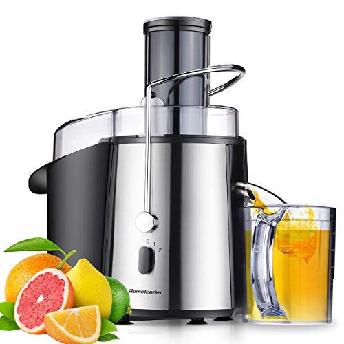 Homeleader Juicer Juice Extractor Wide Mouth Centrifugal Juicer,2 Speed Juicer Machine for Fruits and Vegetable,Stainless Steel,700 Watt by Homeleader