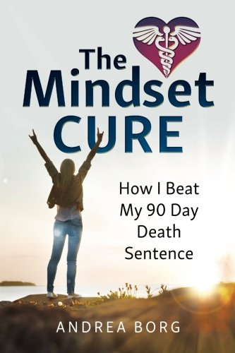 The Mindset Cure: How I Beat My 90 Day Death Sentence by Versluis Press