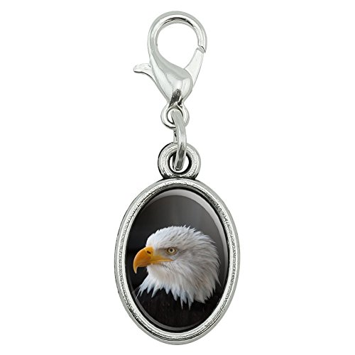 Keychain Eagle Bald (Stoic Bald Eagle Antiqued Bracelet Pendant Zipper Pull Oval Charm with Lobster Clasp)