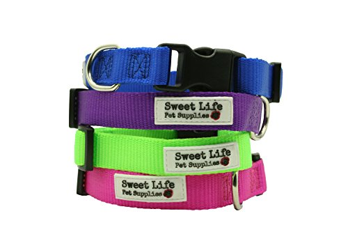 Dog Collar- Durable Woven Nylon Basic Utility Classic Small Purple Collar by Sweet Life Pet Supplies (matching leash available sold separately)