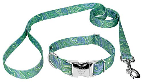Country Brook Petz | Premium Dog Collar and Leash Set - Five Paisley Collection (Green Paisley, 1 Inch, Medium)