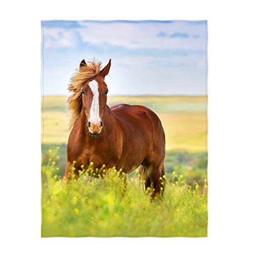 (QH 60 x 80 Inch Beautiful Horse Pattern Super Soft Throw Blanket for Bed Sofa Lightweight Blanket Throw Size for Kids Adults All)