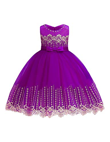 LIEEN Kids Purple Dress, Little Girls Tutu Dresses Sleeveless Lace 3D Embroider Party Holiday Flutter Ruffle Floor Length Gorgeous Crinoline Netting Gowns Size(100) 2-3 Years ()
