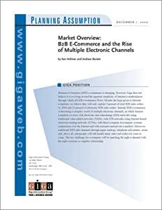market overview b2b e commerce and the rise of multiple electronic channels