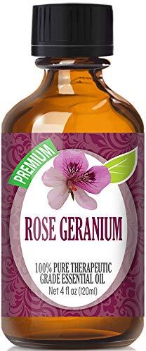 Rose Geranium Essential Oil - 100% Pure Therapeutic Grade Rose Geranium Oil - 120ml by Healing Solutions