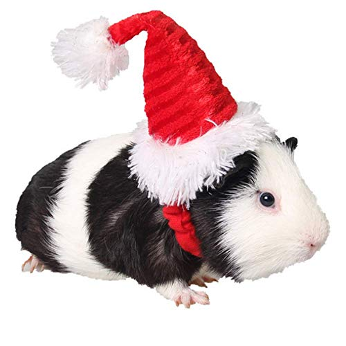 ANIAC Pet Christmas Hat Santa Hat for Rabbit