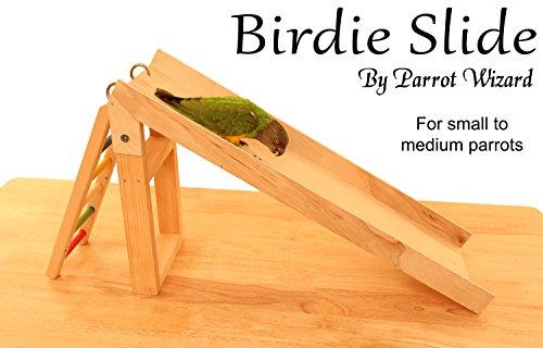 Birdie Slide - Parrot Slide Trick Training Prop