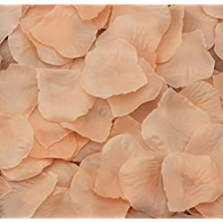 123zero Artificial Silk Rose Flower Petals (2000 Pcs) for Party and Weeding Bridal Decoration (Champagne)