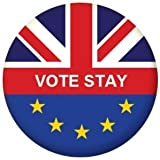 EU Referendum Europe / GB VOTE STAY 25mm Button Badge by MadAboutFlags