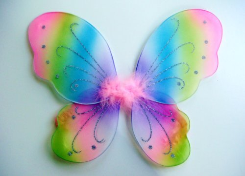 Toddler Rainbow Princess Fairy Costumes (Kids and Toddler Rainbow Fairy Costume Wings)
