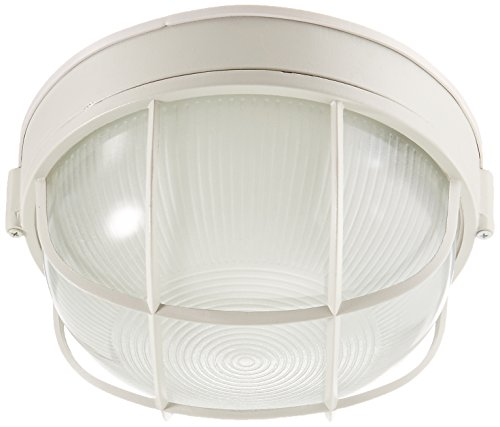 (Trans Globe Lighting 41515 WH Outdoor Aria 10