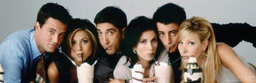 Friends Milkshakes TV Television Show Poster Print 12x36