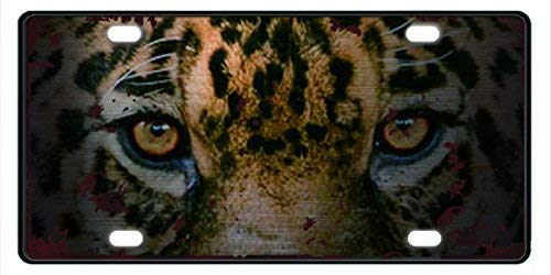 Leopard'S Eyes Front License Decorative Plate Funny Novelty Vanity Tags for Car Unique Gifts for Women,for Mom