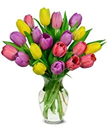 From You Flowers - Sweetheart Tulip Bouquet - 20 Stems (Free Vase Included)