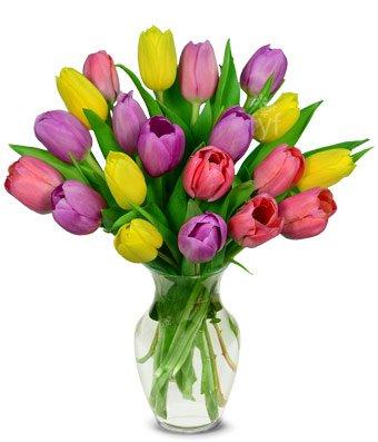 Flowers - Sweetheart Tulip Bouquet - 20 Stems (Free Vase - Bouquet Light Tulip 20