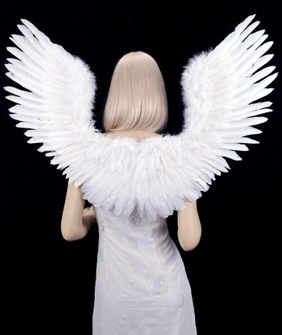 Adult Angel Wings