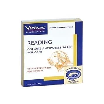 Virbac Reading 41 g - Collar Antiparasitario Para Perros Grossa Talla: Amazon.es: Deportes y aire libre