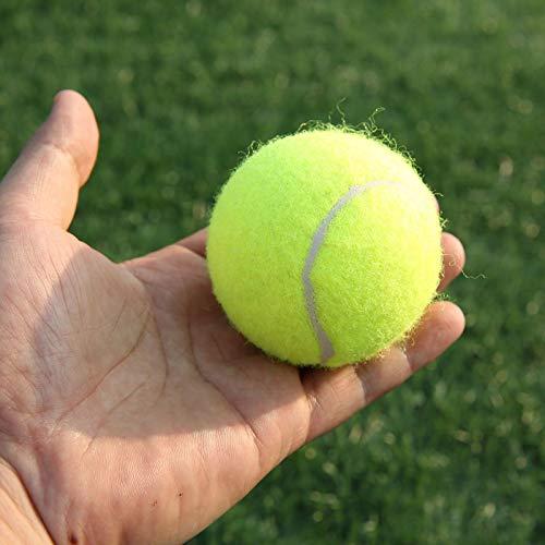 Green Green Tennis Balls Sports Tournament Outdoor Fun Cricket Beach Dog Ideal for Beach Cricket Tennis Practice Durable to Use