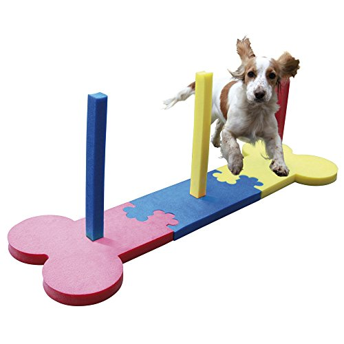 Rosewood Small Dog Agility Slalom