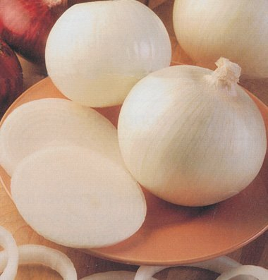 David's Garden Seeds Onion Sierra Blanca DT103 (White) 500 Hybrid Seeds