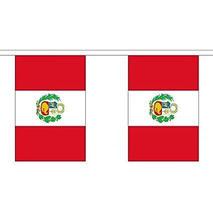 3 metros 10 (22,86 cm x 15,24 cm) de la bandera de Perú con