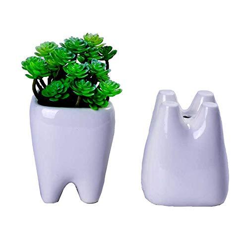 (Gift Prod 2 Pcs Teeth Pots White Ceramic Succulent Planter Pots/Mini Flower Plant Containers Cute Cartoon Planter Pots Plant Window Boxes (Style 5))