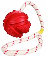 Trixie 33482 Ball am Seil, Naturgummi