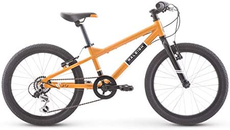 Raleigh Rowdy 20 - Bicicleta de montaña, color naranja: Amazon.es ...