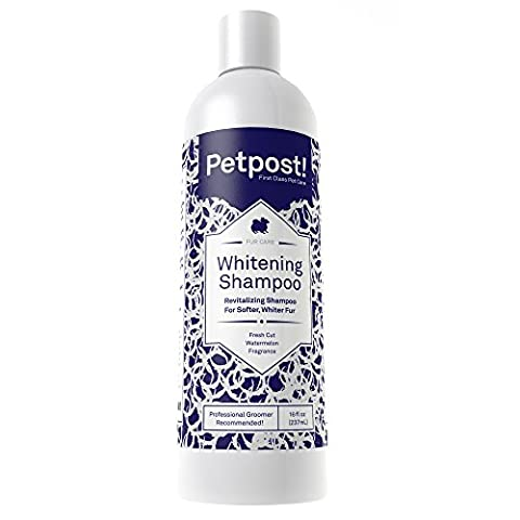 Petpost | Dog Whitening Shampoo - Best Lightening Treatment for Dogs with White Fur - Soothing Watermelon Scent - Maltese, Shih Tzu, Bichon Frise Approved - 16 (Dog Conditioner For Poodles)
