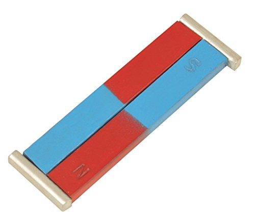 Painted Stem (Eisco Labs Painted Blue/Red Bar Magnets - Chrome Steel, 100 x 12 x 5 mm)