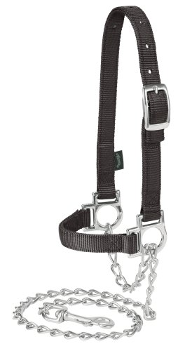 Weaver Leather Livestock Nylon Adjustable Sheep Halter with Chain Lead ()
