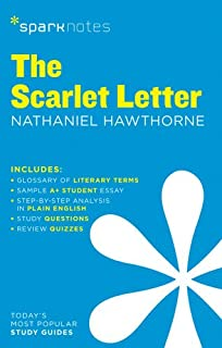 the scarlet letter sparknotes literature guide sparknotes literature guide series