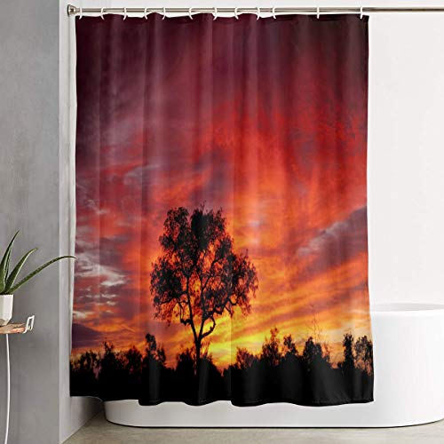 Shower Curtain.Africa African Sunset Kruger Park Scenic South Nature Savannah Tree ildew Proof and Waterproof Fabric Bathroom Decoration, Bath Curtain Accessories, with Hooks, 69X70Inches