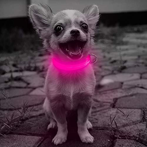 Clan_X Rechargeable Glowing Reflective Collars product image