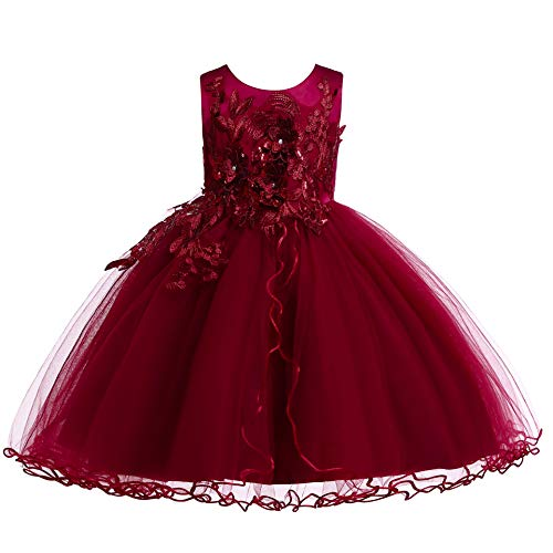 Weileenice Kids Big/Little Princess Girl Costume Lace Dress Girl Flower Pageant Tutu Dresses (2-3Years, -