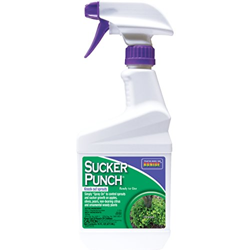 - Bonide 2761 RTU Sucker Punch, 16 oz