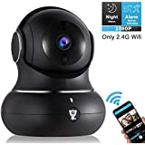 Wireless Indoor Home Security Camera - 1080P Littlelf IP Pet Camera WiFi Surveillance Baby Monitor with 2-Way Audio, 3D Navigation Panorama, Cloud Service, Remote Detect for iOS/Android, Night Vision