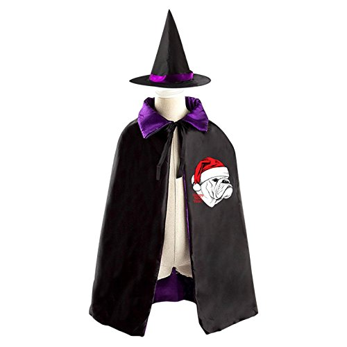 Sled Costume Dog (Christmas dog Halloween Costumes Witch Wizard Reversible Cloak With Hat Kids Boys)