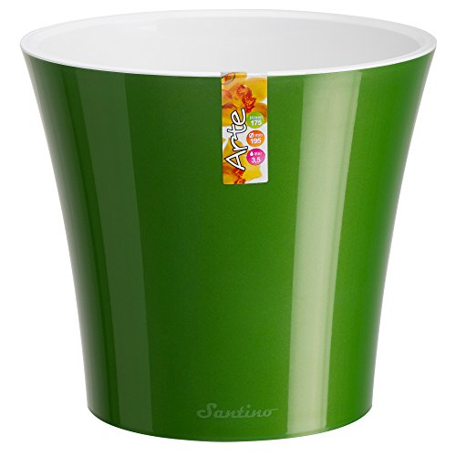 Santino Watering Planter Green Gold Flower product image