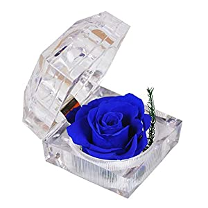 Preserved Flower Eternal Real Rose in Crystal Acrylic Ring Box, Unique Gift for Women, Girl, Valentine's Day, Christmas, Anniversary, Thanksgiving Day, Birthday, Wedding (Ocean Heart)