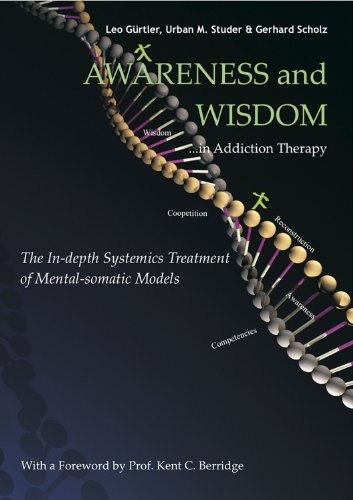 Depth Treatment (Awareness and Wisdom in Addiction Therapy: The In-Depth Systemics Treatment of Mental-somatic Models)