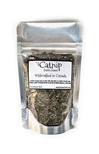 Reiki Charged Catnip Nepeta Cataria Wildcrafted in Canada Loose Leaf Dried Herb 0.25 oz bag Small Sample Tea