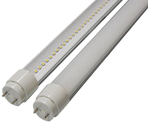 Goodlite G-20429  10-watt 2-Feet T8 T10 or T12 LED Tube 20W 17W Fluorescent Bulb Replacement, UL Approved Single End Power, Clear